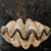 clam shell black 8x8.jpg