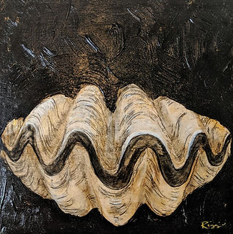 clam shell black 8x8.jpg