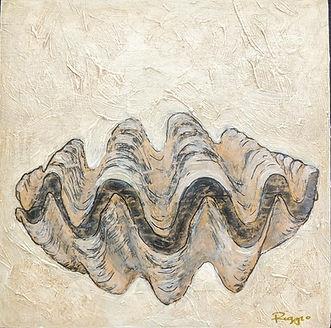 clam shell 8x8.jpg