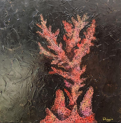 coral 12x12.jpg