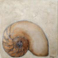 nautilus 8x8.jpg