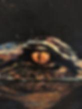 Gator IV detail.jpg