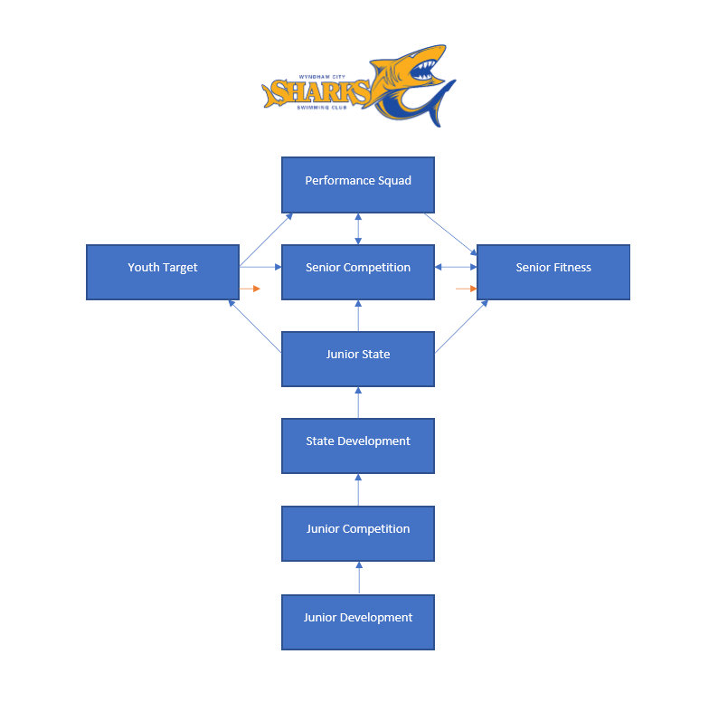 Wyndham City Sharks Swimming Club. Squad-Structure.