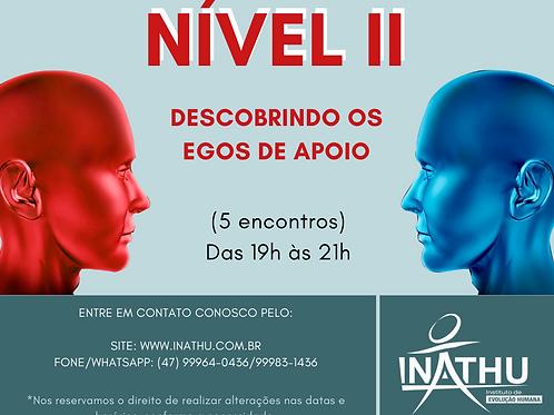 PDN - Nível II - Presencial ou On-line (AO VIVO)