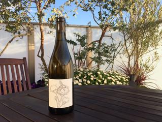 2019 春のワイン 入荷のお知らせ