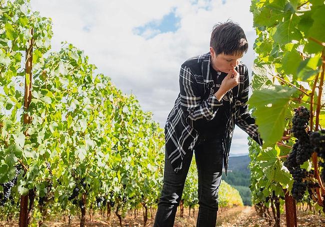 kk tasting from vine_2019.jpg