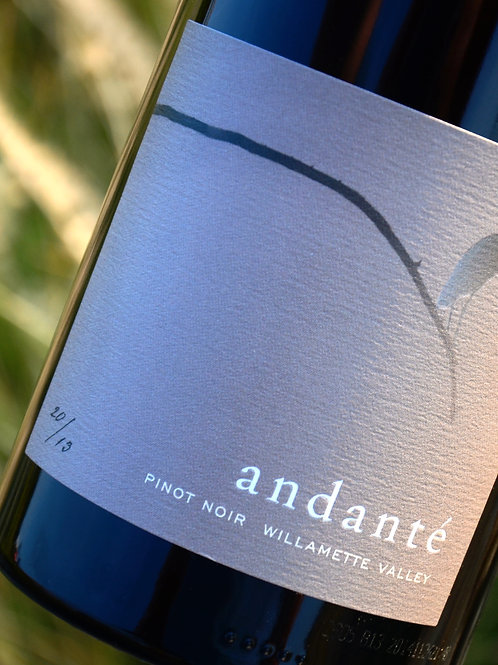 2014 Andante Willamette Valley Pinot Noir