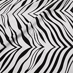 Classic Zebra.png