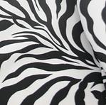 Wicked Zebra.png
