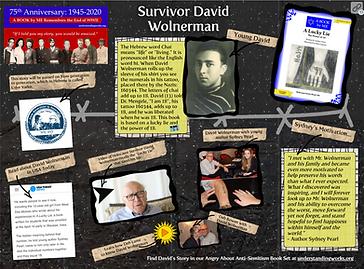 Survivor David Wolnerman.png