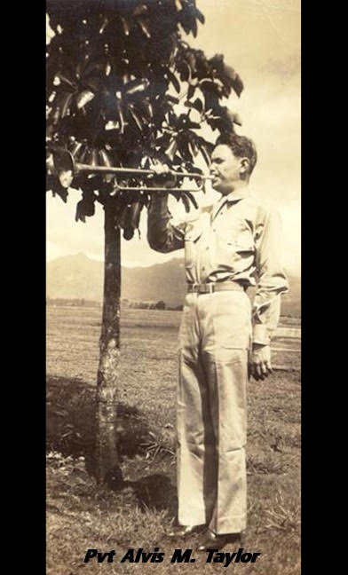 Alvis with Trumpet