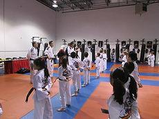 Dragons Martial Arts