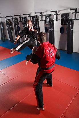 Martial Arts / Brazilian Jiu Jitsu / Eskrima