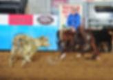 Taylor, Ricky_Cats Starbright_TF13_3398-