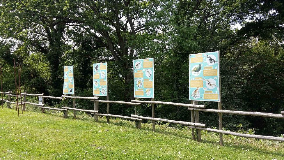 Panneaux mise en page Ranrouët Herbignac oiseaux