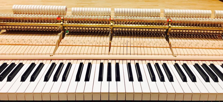 Grand piano keys & hammers