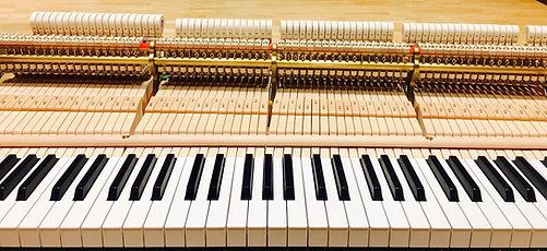 Grand piano action