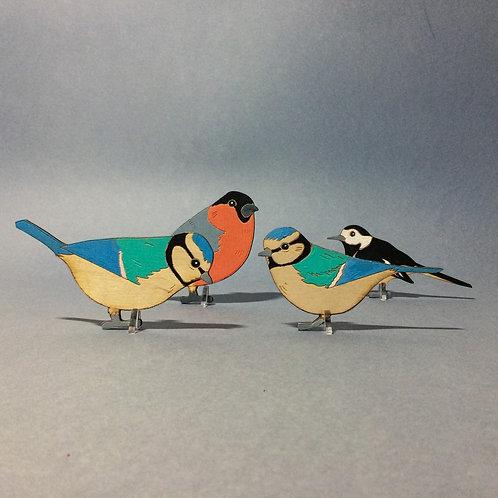 Garden bird posse