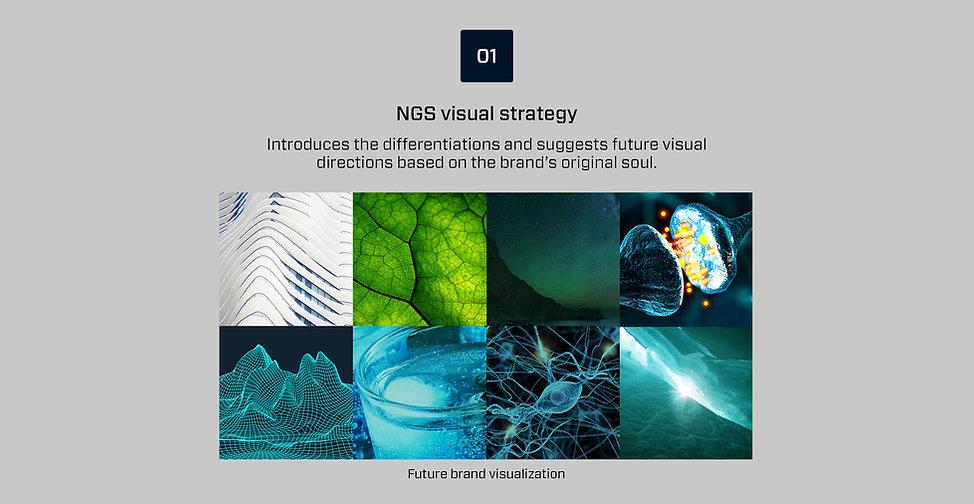 NGS_32.jpg