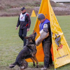 2014 GSD Nationals, Mike w. Irmus