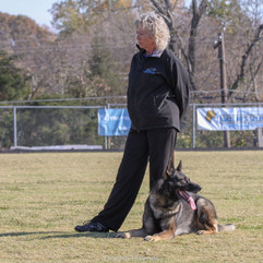 2012 GSD Nationals, Caro w. Grant