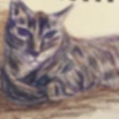 Drawing Kevin on the flight #tabbycat #k