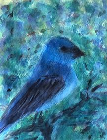blue bird.jpg.HEIC