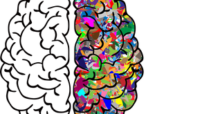 IS NEUROPLASTICITY BEING OVEREXAGGERATED?
