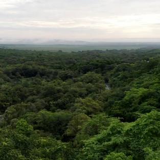 Tropical Mexico