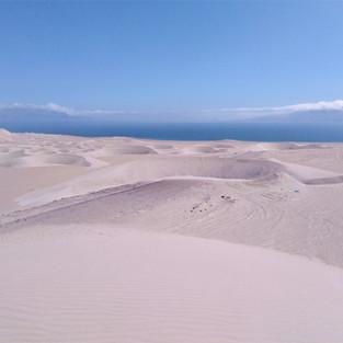 Paracas National Reserve (Peru)