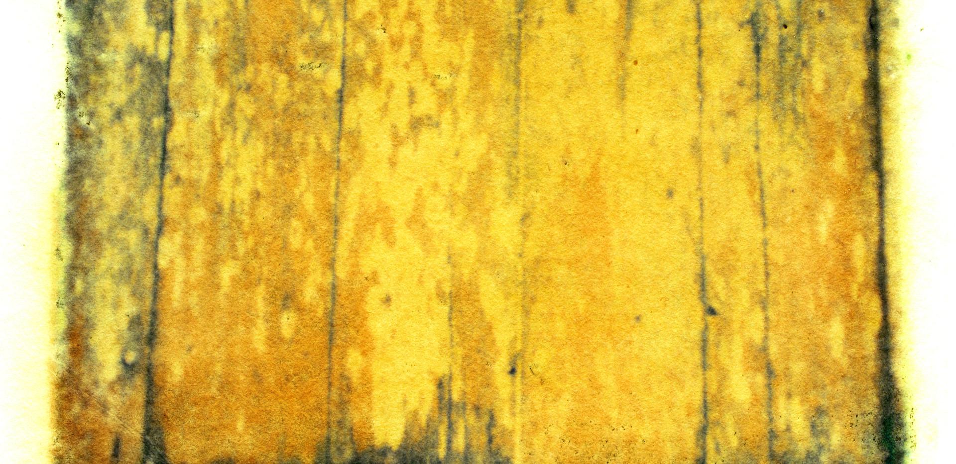 Emulsion Tran - Fence.jpg