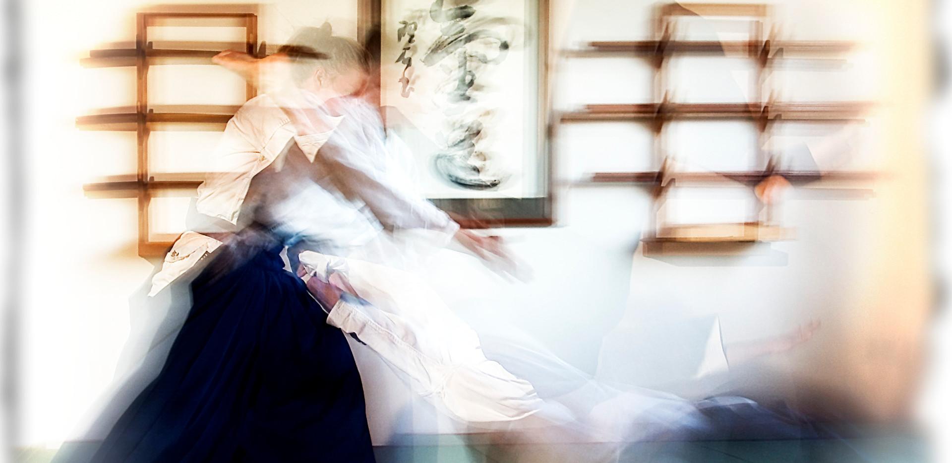 Aikido Motion