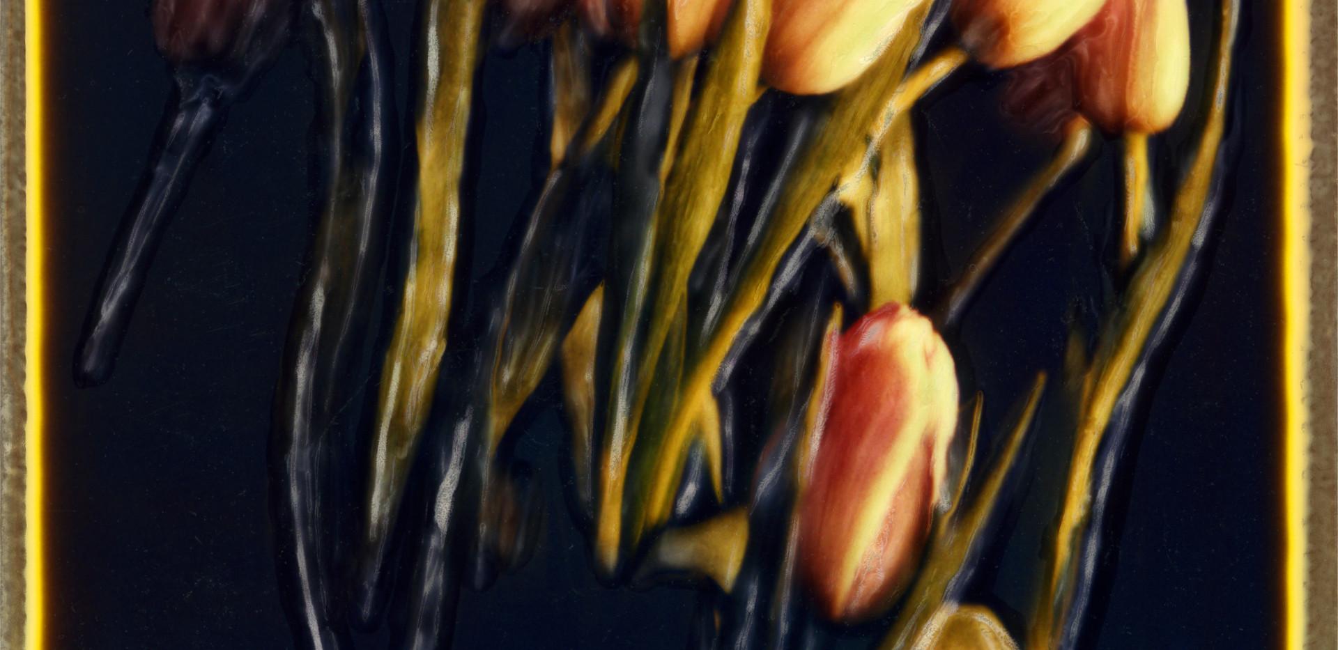 SX-70 Tulips001.jpg