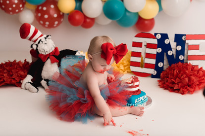 Phoenix baby cake smash photographer