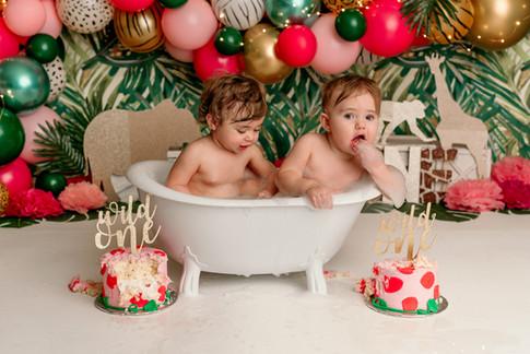 first birthday photographer in Goodyear AZ