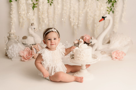 one year old pictures in Phoenix arizona swan cake smash