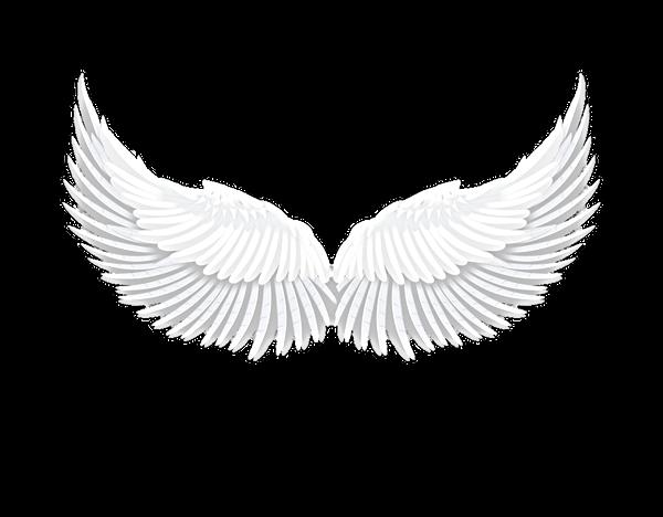 Niche Perfumes | realistic white angel wctor