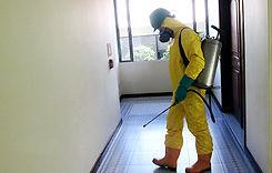 fumigacion-control-de-plagas.jpg
