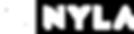 Nyla Technology Solutions Logo