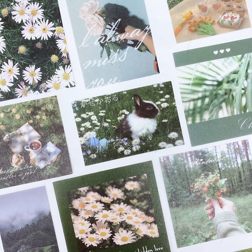Nature Lover Lifestyle Stickers