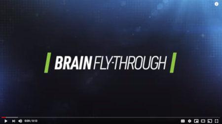 TeachAids-CrashCourse-Brain.jpg