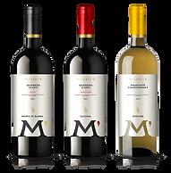 Bottiglie di vino Malgrà - Packaging design