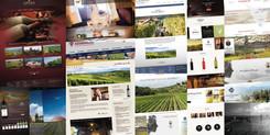 Siti web mondo del vino - Revestudio