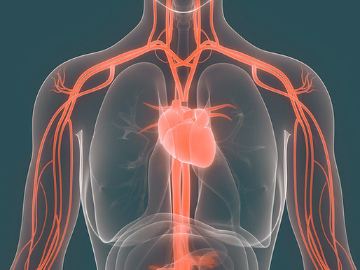 Physiotherm prezioso alleato nella prevenzione della arteriosclerosi.