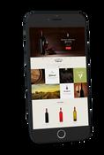 Siti web mondo del vino
