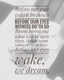 Before our Eyes