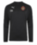Training Top.png