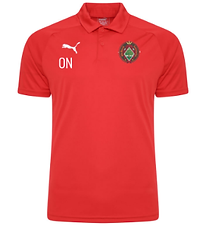 Polo Shirt Red.png