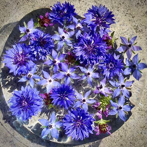Throat Chakra Floral Essence, 30ml