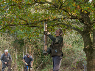 Sustead Common gets a tidy-up